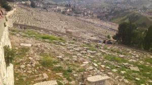 Und hier noch mehr Gräber, die angelegt wurden, um dem Messias den Weg Richtung Jerusalem zu versperren.